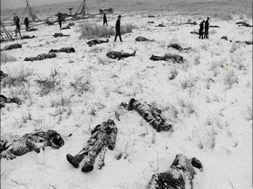 Wounded-knee-bodies-in-snow
