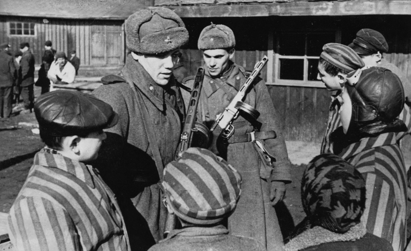 Falsification of history: Auschwitz and its liberation ...