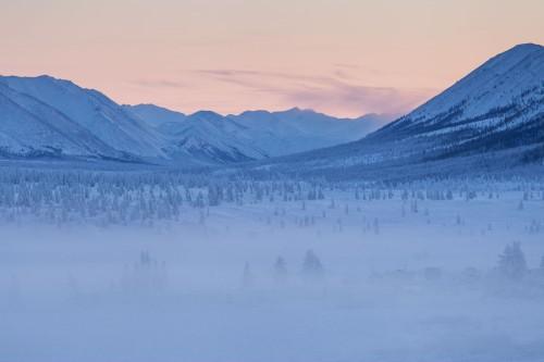 Forests near Oymyakon in Yakutia, Russia | Maarten Taakens