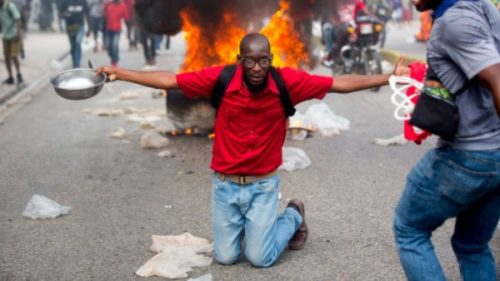 2019.02.07.Haitian demonstrator